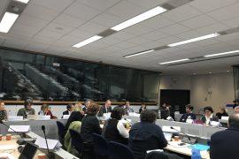 Rengiama nauja Europos kultūros darbotvarkės vizija