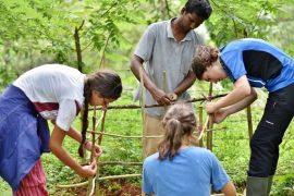 UNESCO Pasaulio paveldo centras kviečia teikti paraiškas pasaulio paveldo savanorystės iniciatyvoms 2019 metais